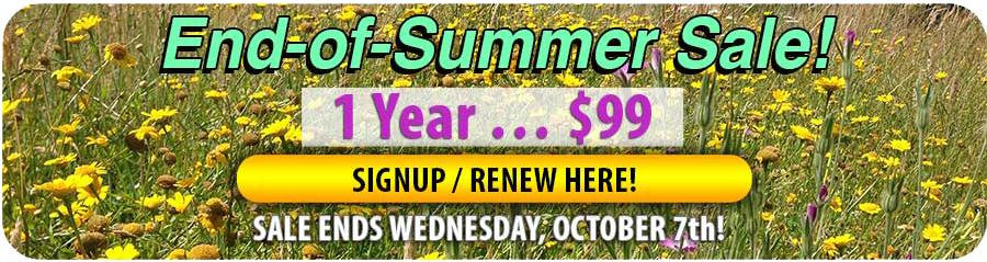 RENEW NOW SAVE $131
